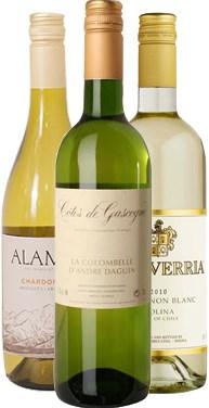 Winefinders Viner till skaldjur